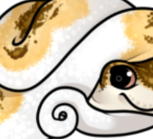 Piebald Snake Sticker