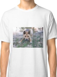 Playful Dingo Classic T-Shirt