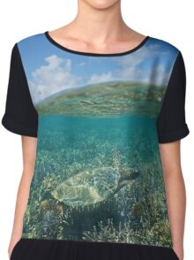 Above and below water sea turtle and coral reef Chiffon Top