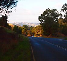 Going home after a long day out, serenity of Kilmore East VIC Australia by Margaret Morgan (Watkins)
