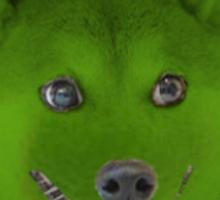 Dogefruit - Tongue Doge Sticker
