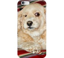 I was Dog Sleeping !! iPhone Case/Skin