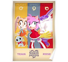Team Rose - Sonic the Hedgehog Poster