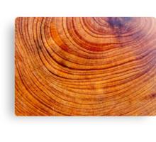 Juniper wood Canvas Print
