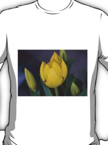 tulips in bloom T-Shirt