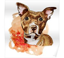 Brown Pit Bull Drawing with Orange Abstract Watercolor Poster