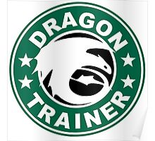 Dragon trainer Poster