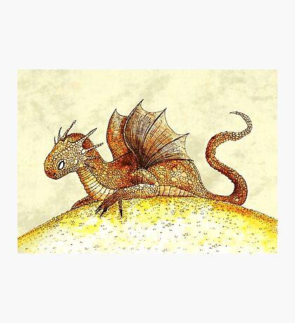 Dragon hoard Photographic Print