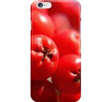 Rowan Berries iPhone Case/Skin