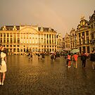 From Brussells with Love  by Rob Hawkins
