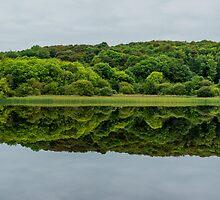 Lough Gill, Co. Sligo/Co. Leitrim, Ireland by Mark Bangert