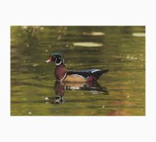 Male Wood Duck - Mud Lake T-Shirt