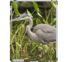 Great Blue Heron - Mud Lake, Ottawa, Canada iPad Case/Skin