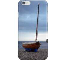 Birds Eye View iPhone Case/Skin