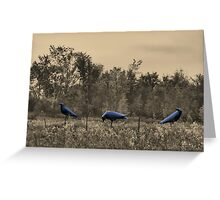 3 Crows in Field Greeting Card