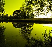 Golden Pond by Nick Kirby