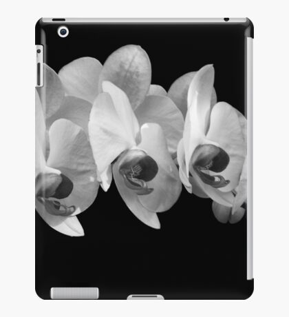 Orchid 10 iPad Case/Skin