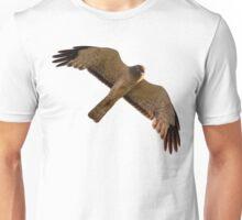 A Northern Harrier soars overhead Unisex T-Shirt