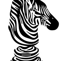 zebra by Canonica