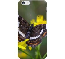 Map Butterfly - Araschnia levana iPhone Case/Skin