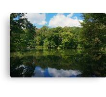 Reflections of Green Canvas Print