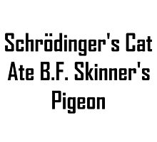 Schrodinger's Cat Ate B.F. Skinner's Pigeon by geeknirvana