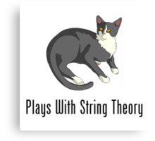 Plays With String Theory Canvas Print