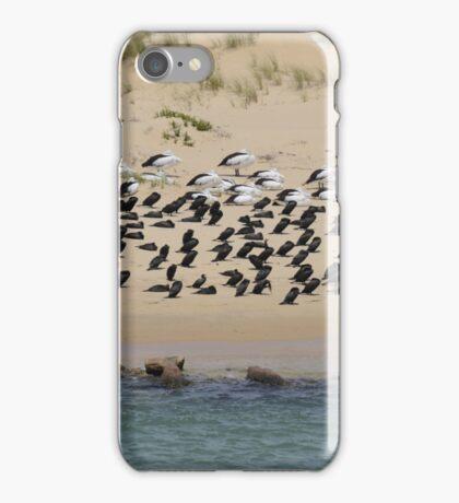 pattern in nature iPhone Case/Skin