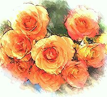 Roses by OlaG