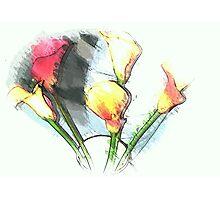Still life ... Lilies  Photographic Print