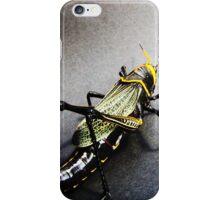 01 San Pedro Horse Lubber Grasshopper iPhone Case/Skin