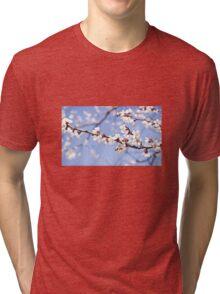 Spring cherry blossom Tri-blend T-Shirt