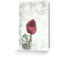 Tulip in a glass Greeting Card