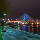 Zakim Bridge Park - Boston, MA USA by Tom Piorkowski
