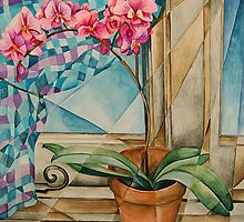 Orchid in Light by Tiffany Budd