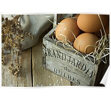 Organic brown eggs in a French vintage wood box, kinfolk style Poster