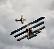 The Great War Display Team by Nigel Bangert