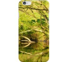 Riverside Reflections....................................N Ireland iPhone Case/Skin