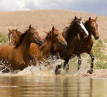 Dancing Waters by Kent Keller
