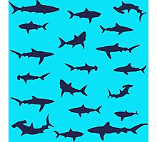 Different Sharks Silhouette Pattern Photographic Print