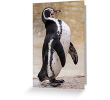 Laughing Penguin Greeting Card