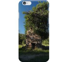 08 Carr House Ruins Tree Fireplace iPhone Case/Skin