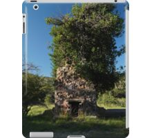 08 Carr House Ruins Tree Fireplace iPad Case/Skin
