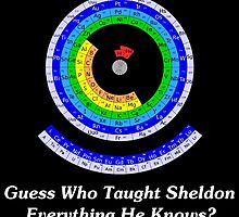 Guess Who Taught Sheldon Everything He Knows?  by geeknirvana