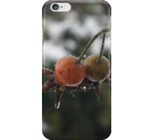 Snowy Berries iPhone Case/Skin