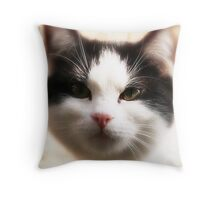 JUST LOOKING ... Throw Pillow
