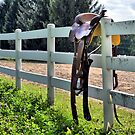 Saddle on the Fence by Brian Gaynor