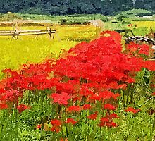 Red Spider Lilies Vivid Rice Field Rural Painterly by Beverly Claire Kaiya
