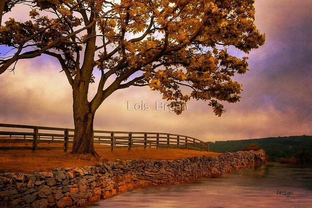 One Tree Hill by Lois  Bryan