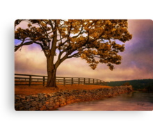 One Tree Hill Canvas Print